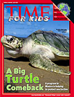 time for kids turtles.jpg