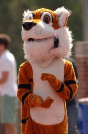 Tiger Mascot Clap.jpg