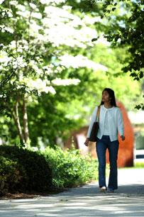 Campus Walk 2006-2.jpg