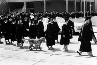 82 Grad March Dog.jpg