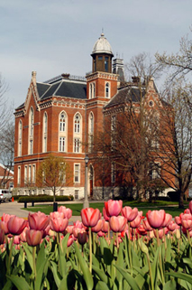 East College 07 Tulips.jpg