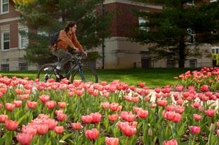 Student Bike Spring 2007.jpg