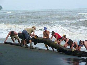 costarica_wtis_cleaning.jpg