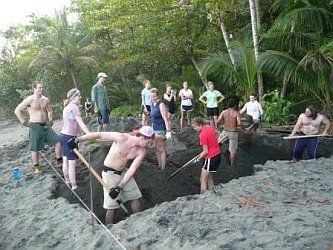 costarica_wtis_digging.jpg