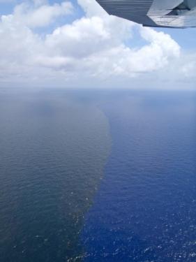 Oil Water Gulf July2010.jpg